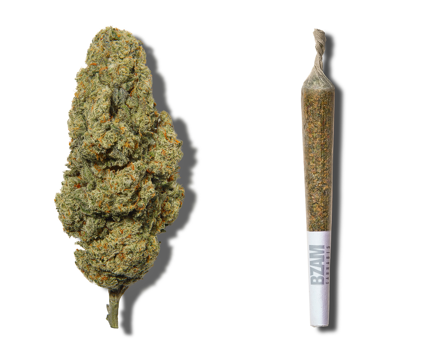 BZAM cannabis bud and cannabis joint